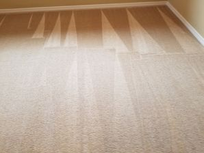 Carpet Restoration in Beaverton, OR (1)