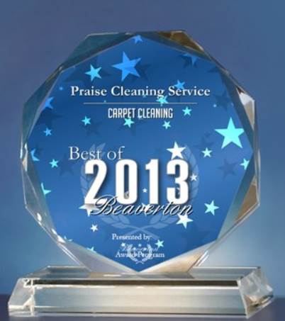 Award for Praise Cleaning Services