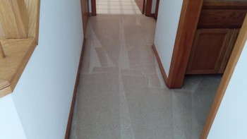 Carpet Cleaning Hillsboro OR